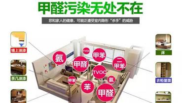 中国家庭甲醛污染无处不在