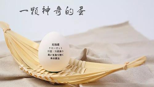 树派环保光触媒蛋-进口原气蛋