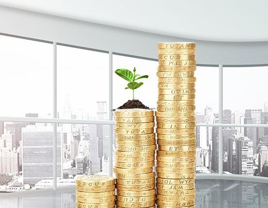 树派环保项目十大盈利点