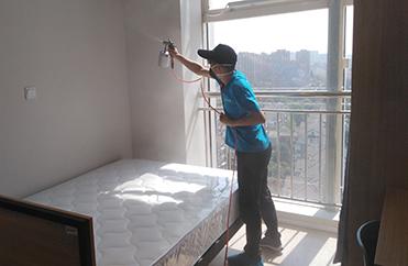 室内空气净化,室内空气治理,树派除甲醛