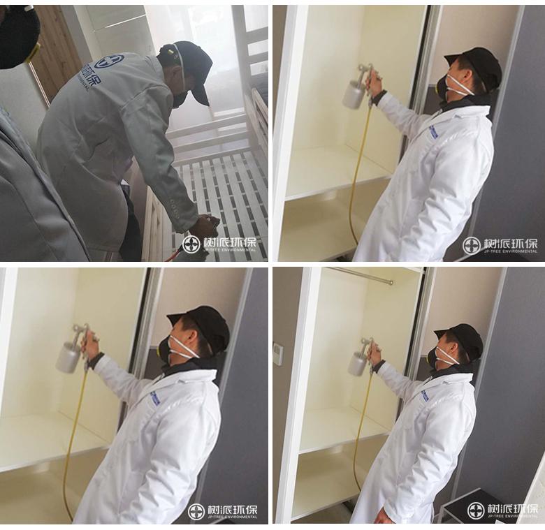 杭州除甲醛-树派环保室内空气治理-杭州·万泰城章