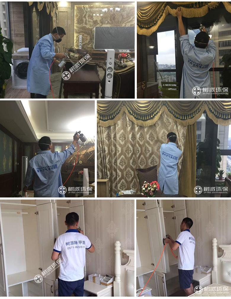 杭州除甲醛-树派环保室内空气治理-杭州·九龙仓碧玺