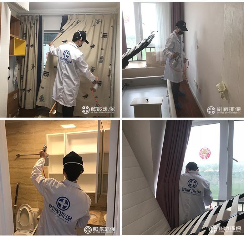 杭州除甲醛-树派环保室内空气治理-杭州-金辰之光