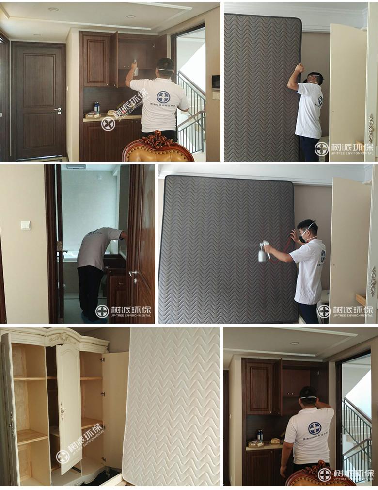 杭州除甲醛-树派环保室内空气治理-杭州·金地繁华里