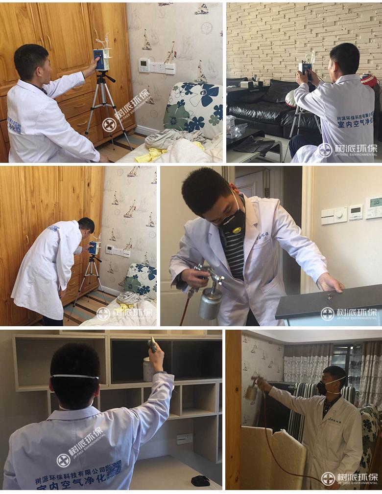 杭州除甲醛-树派环保室内空气治理-杭州·百合新城