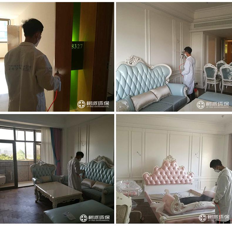 杭州除甲醛-树派环保室内空气治理-琅月月子中心