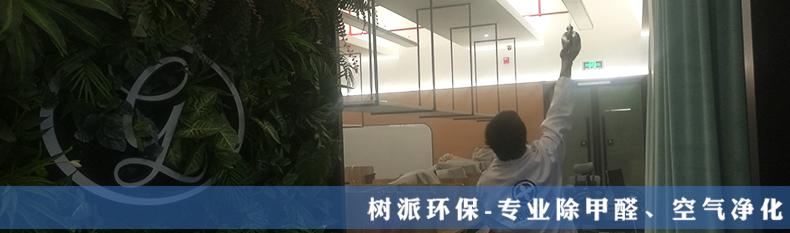 树派除甲醛案例-金夫人摄影 (1).jpg