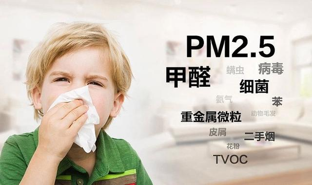 室内污染物